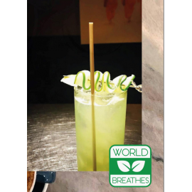 """JUMBO (STANDARD) 8"""" BEVERAGE STRAW, ECO-FRIENDLY BAGASSE, WRAPPED (7,500)"""