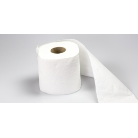 TOILET TISSUE PAPER, HOUSEHOLD ROLL, 2-PLY (96 ROLLS/CASE)
